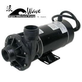 """Wave 2-speed Pump 1-1/2hp 2"""" (A.O. Smith MotorHS/LS) w/Leaf Trap"""