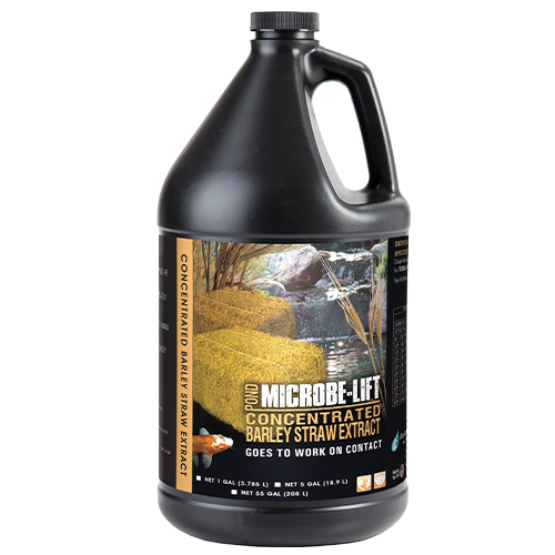 Microbe-Lift Barley Straw Extract - 1 Gallon